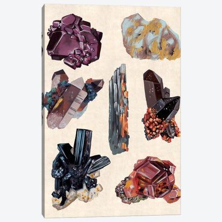 Vintage Minerals II Canvas Print #WNG774} by Melissa Wang Canvas Art Print