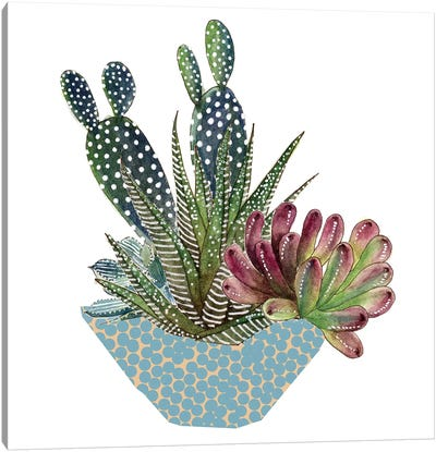 Cactus Arrangement I Canvas Art Print