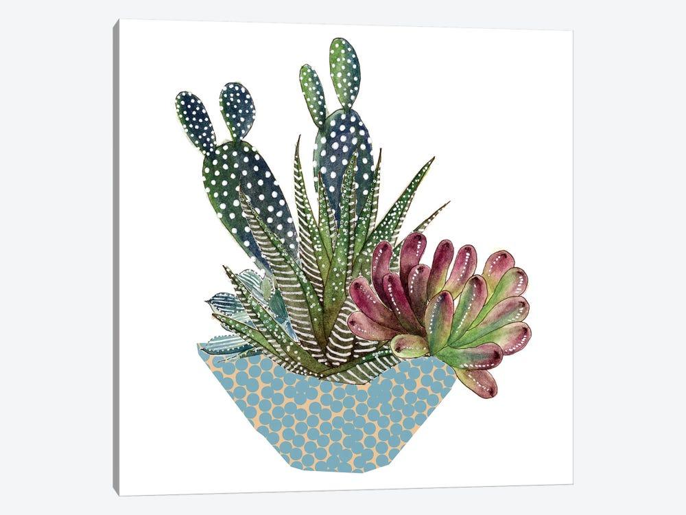 Cactus Arrangement I by Melissa Wang 1-piece Canvas Art