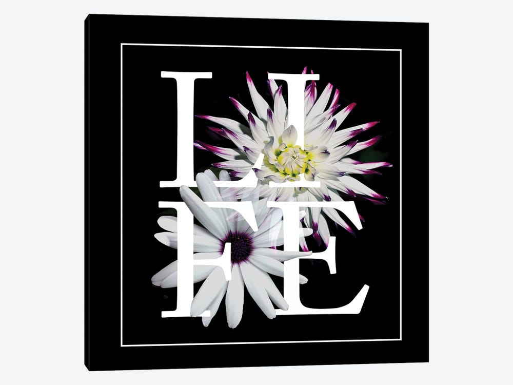 Floral Graphic II by Melissa Wang 1-piece Canvas Art