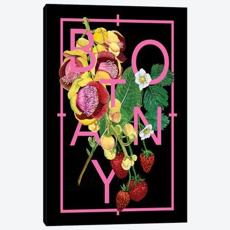 Floral Inspiration II Canvas Print #WNG82} by Melissa Wang Canvas Print
