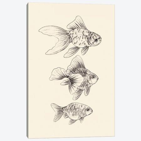 Goldfish III Canvas Print #WNG862} by Melissa Wang Canvas Artwork