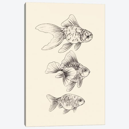Goldfish III Canvas Print #WNG862} by Melissa Wang Canvas Artwork
