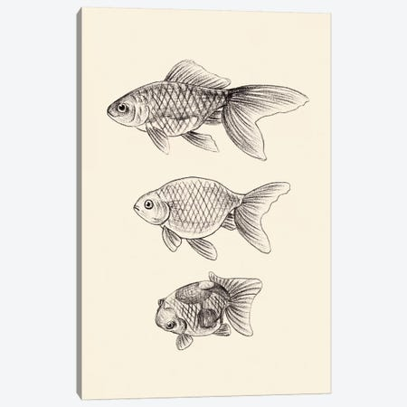 Goldfish IV Canvas Print #WNG863} by Melissa Wang Canvas Artwork
