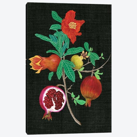 Pomegranate Study II Canvas Print #WNG89} by Melissa Wang Art Print