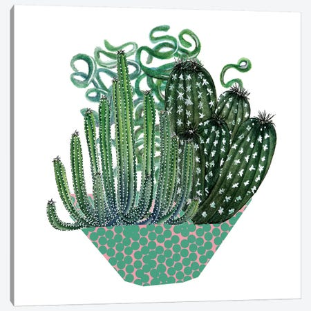 Cactus Arrangement II Canvas Print #WNG8} by Melissa Wang Canvas Art