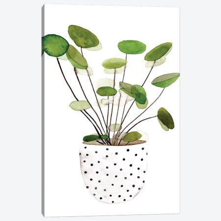 Plant in a Pot II Canvas Print #WNG920} by Melissa Wang Canvas Print