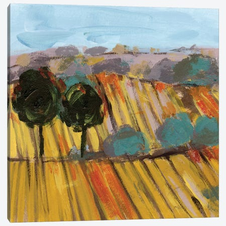 Wheat Crop II Canvas Print #WNG957} by Melissa Wang Canvas Art Print