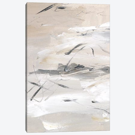 Ceramic Surface II Canvas Print #WNG975} by Melissa Wang Canvas Print