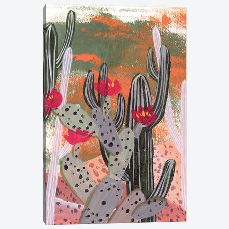 Desert Flowers II Canvas Print #WNG977} by Melissa Wang Canvas Print
