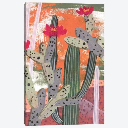 Desert Flowers III Canvas Print #WNG978} by Melissa Wang Canvas Wall Art