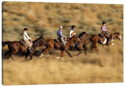 Cowboys And A Cowgirl Riding Domestic Horse Pair Through Field, Oregon Canvas Art Print