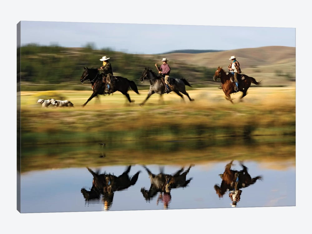 Cowboys Riding Domestic Horses With Dogs Running Beside Pond, Oregon 1-piece Canvas Wall Art