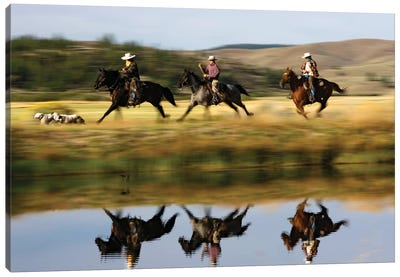 Cowboys Riding Domestic Horses With Dogs Running Beside Pond, Oregon Canvas Art Print