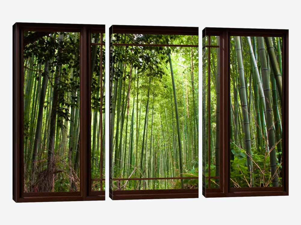 Bamboo Forest Window View by Unknown Artist 3-piece Canvas Artwork