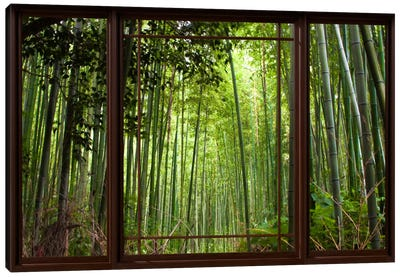 Bamboo Forest Window View Canvas Art Print