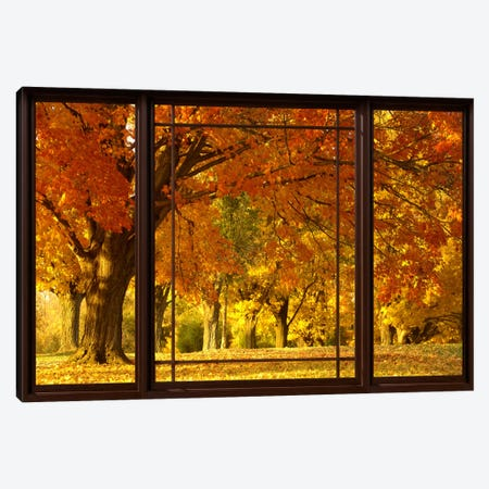 Golden Autumn Trees Window View Canvas Print #WOW45} by Unknown Artist Art Print