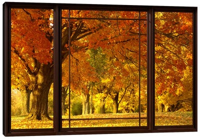 Golden Autumn Trees Window View Canvas Art Print