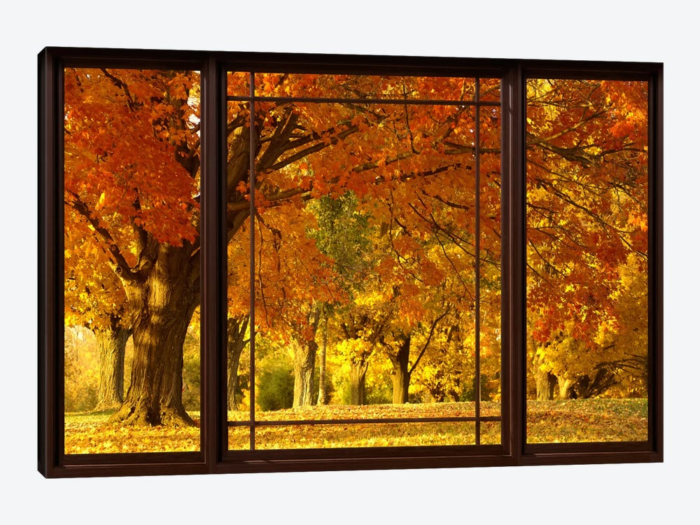 Golden Autumn Trees Window View by Unknown Artist 1-piece Canvas Art