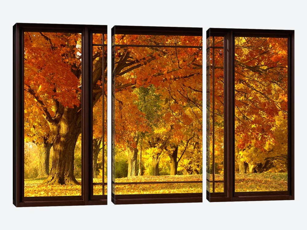 Golden Autumn Trees Window View by Unknown Artist 3-piece Canvas Wall Art