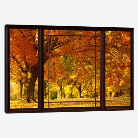 Golden Autumn Trees Window View Canvas Print #WOW45} by Unknown Artist Art Print