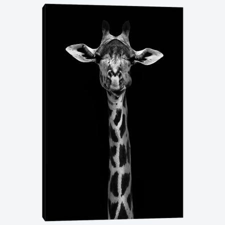 Giraffe Portrait Canvas Print #WPA3} by WildPhotoArt Canvas Artwork