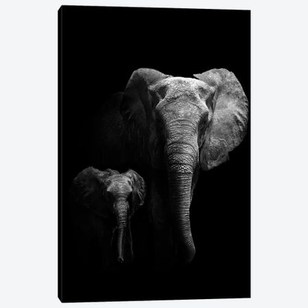 Mother And Child Canvas Print #WPA5} by WildPhotoArt Art Print