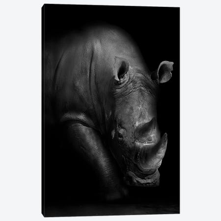 Rhino Canvas Print #WPA7} by WildPhotoArt Canvas Art Print