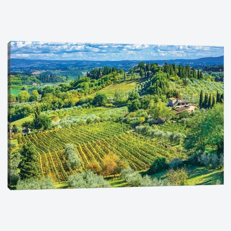 Tuscan Vineyard, San Gimignano, Tuscany, Italy. Canvas Print #WPE37} by William Perry Art Print