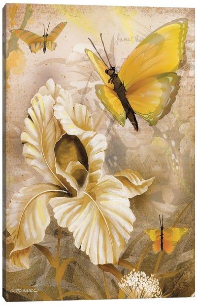 Flower & Butterflies I Canvas Art Print