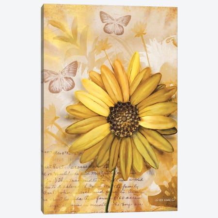 Flower & Butterflies II Canvas Print #WRG19} by Ed Wargo Canvas Art Print
