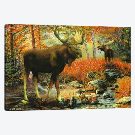 Call of the Wild Canvas Print #WRG1} by Ed Wargo Canvas Wall Art