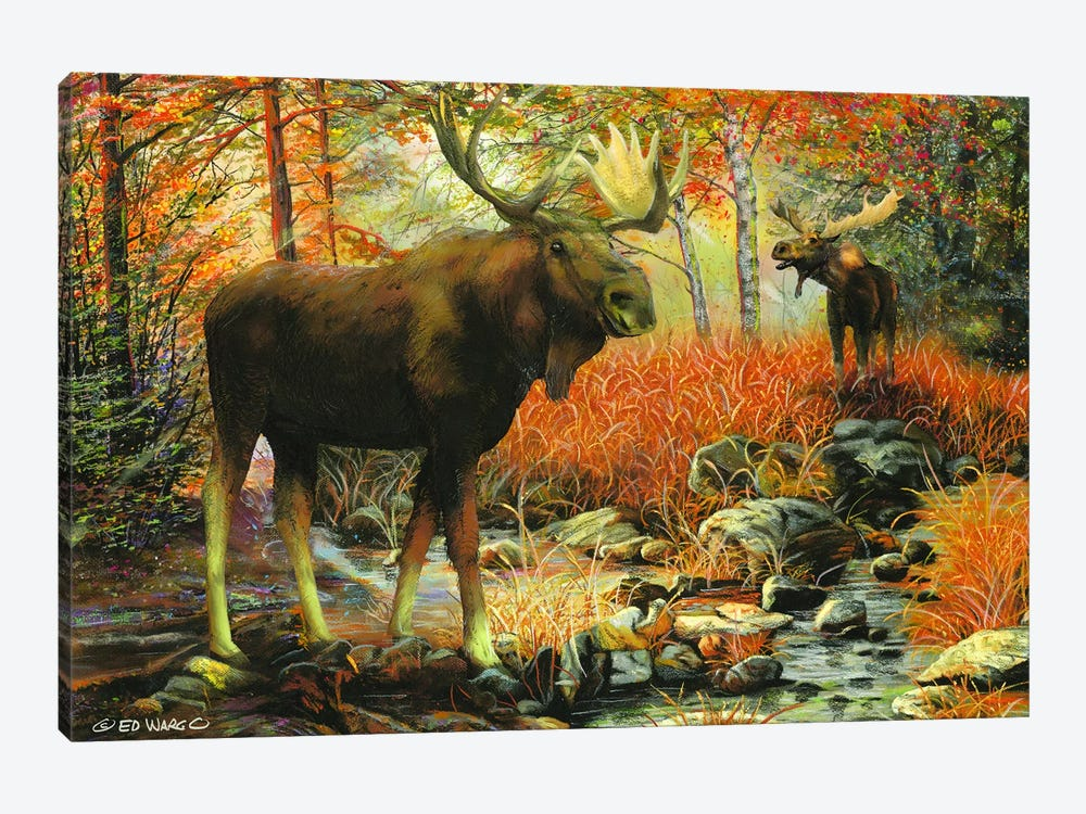 Call of the Wild by Ed Wargo 1-piece Art Print