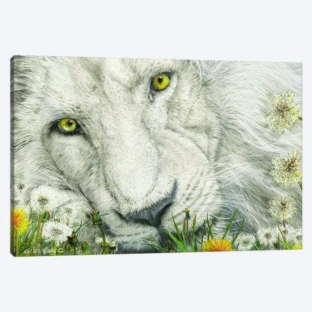 Dandy Lion Canvas Print #WRG2} by Ed Wargo Canvas Artwork