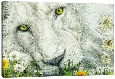 Dandy Lion Canvas Art Print
