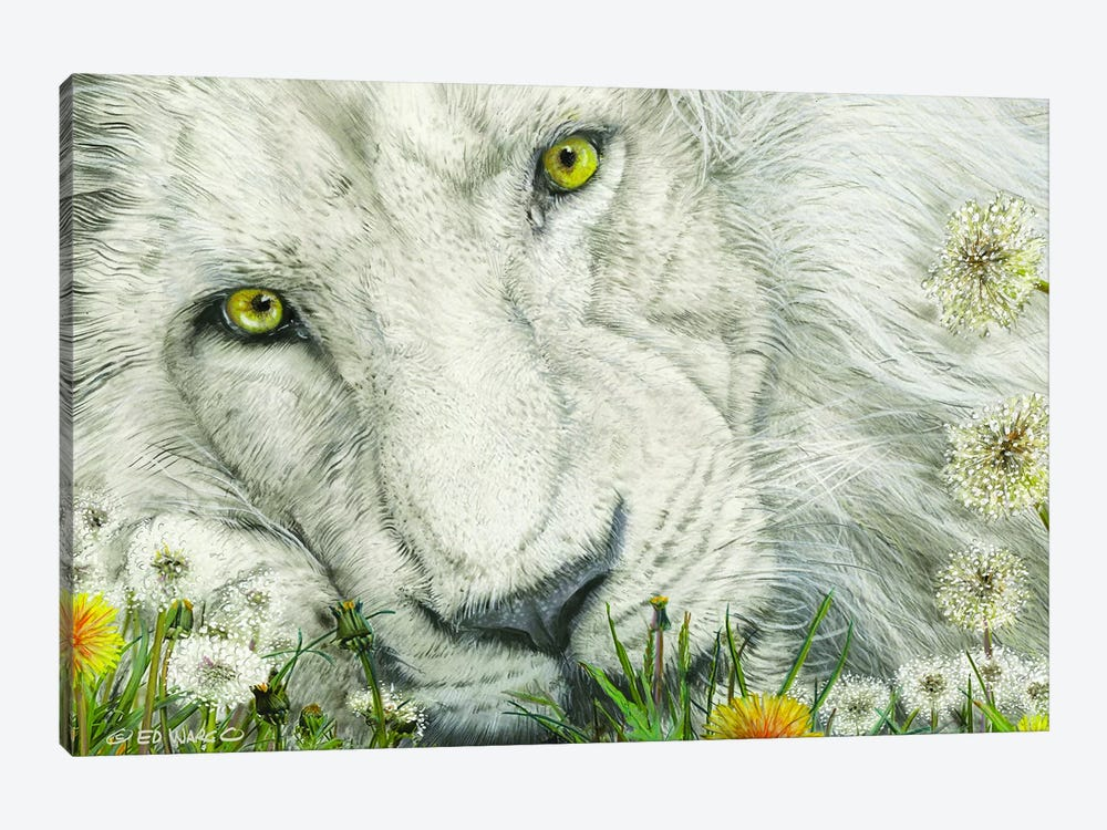 Dandy Lion by Ed Wargo 1-piece Canvas Artwork