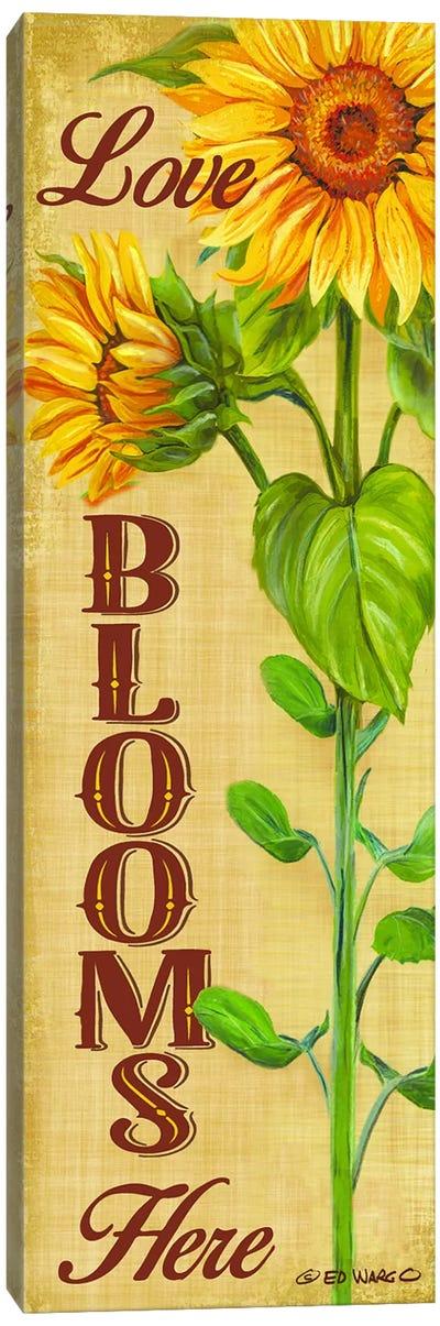 Love Blooms Here Canvas Art Print