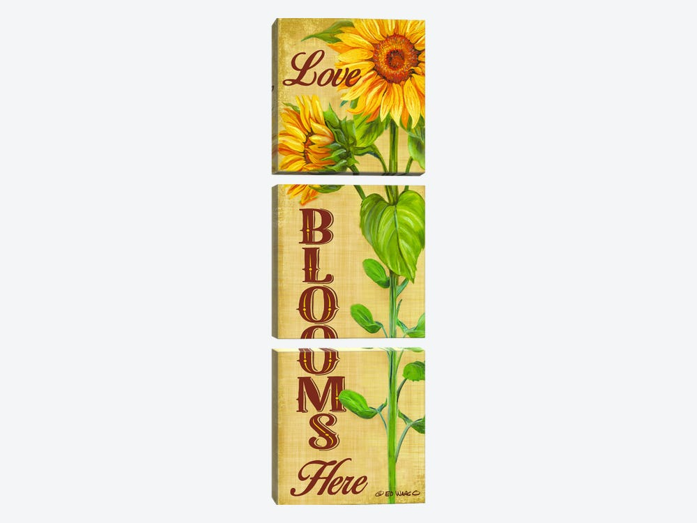 Love Blooms Here by Ed Wargo 3-piece Canvas Art Print