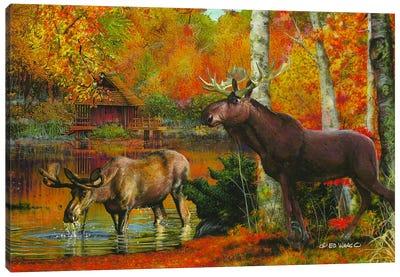 Peaceful Retreat Canvas Art Print