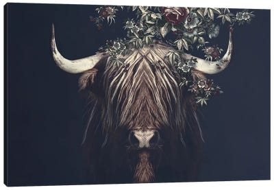 Highlander II Canvas Art Print