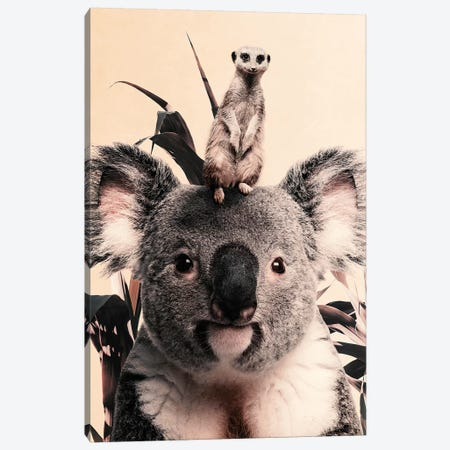 Koala Meerkat Dreamteam Canvas Print #WRI102} by Wouter Rikken Canvas Art Print