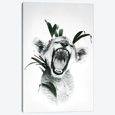 Roaring Lion Cub Canvas Print #WRI106} by Wouter Rikken Canvas Art