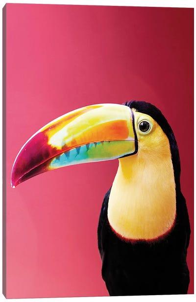Toucan Canvas Art Print