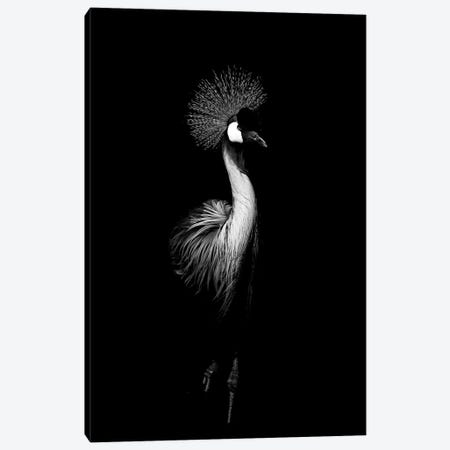 Dark Crane 3-Piece Canvas #WRI10} by Wouter Rikken Art Print