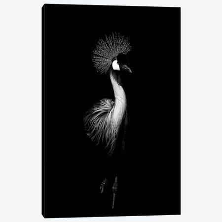 Dark Crane Canvas Print #WRI10} by Wouter Rikken Art Print