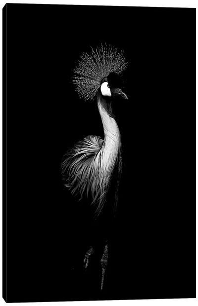Dark Crane Canvas Art Print