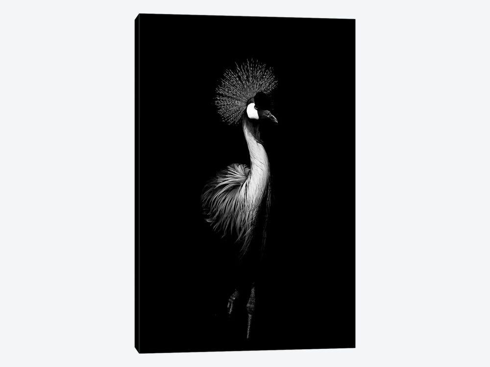 Dark Crane by Wouter Rikken 1-piece Canvas Print