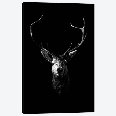 Dark Deer Canvas Print #WRI11} by Wouter Rikken Art Print