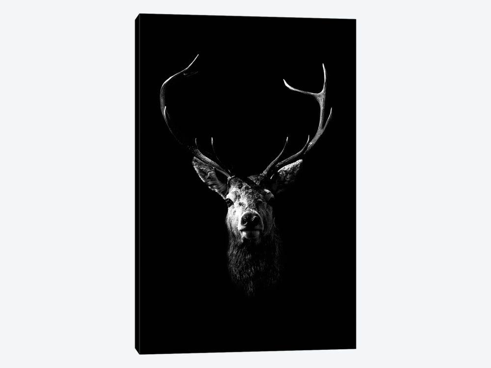 Dark Deer by Wouter Rikken 1-piece Canvas Art