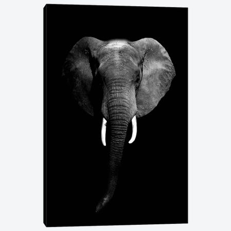 Dark Elephant I Canvas Print #WRI15} by Wouter Rikken Canvas Artwork
